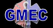 GMEC_transp_180